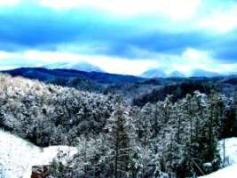 What a wonderful time to come and visit us at Hotel Pigeon Forge.